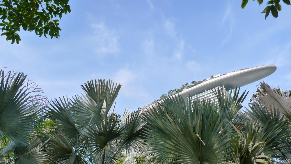 Last Garden Marina Sands and trees.jpeg