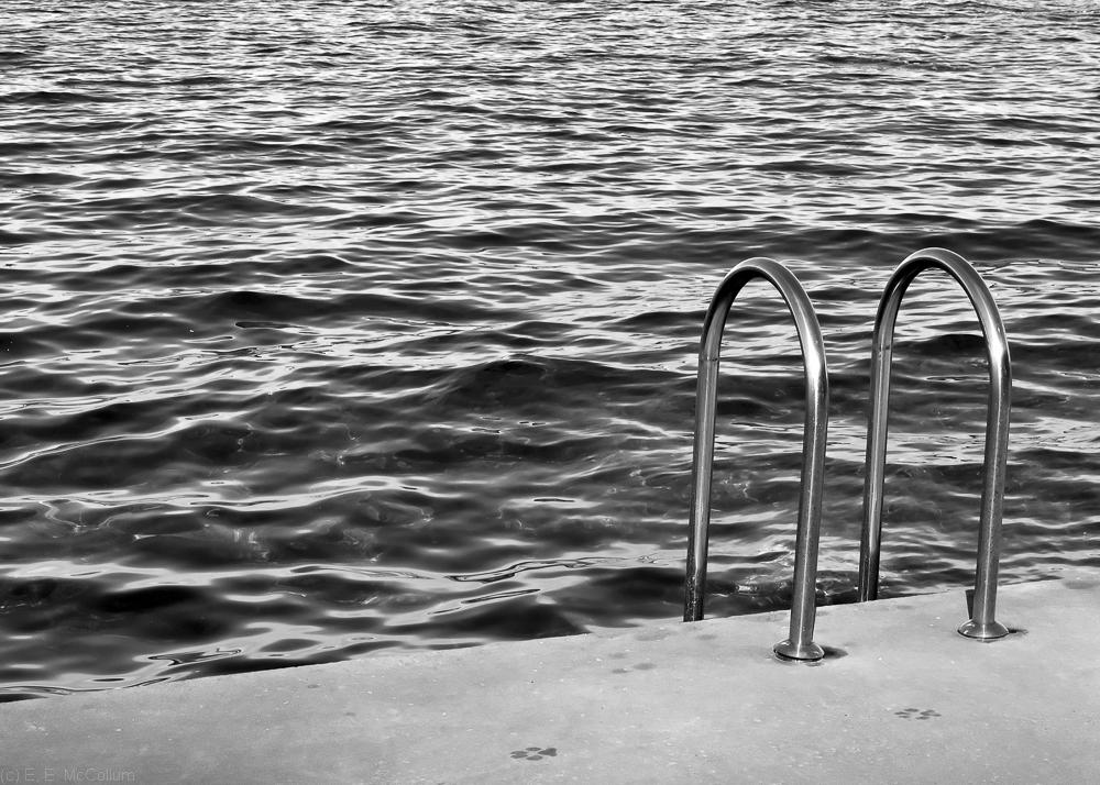 Beach ladder