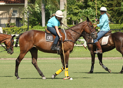 Polo Clinic Continues at Grand Champions Polo Club