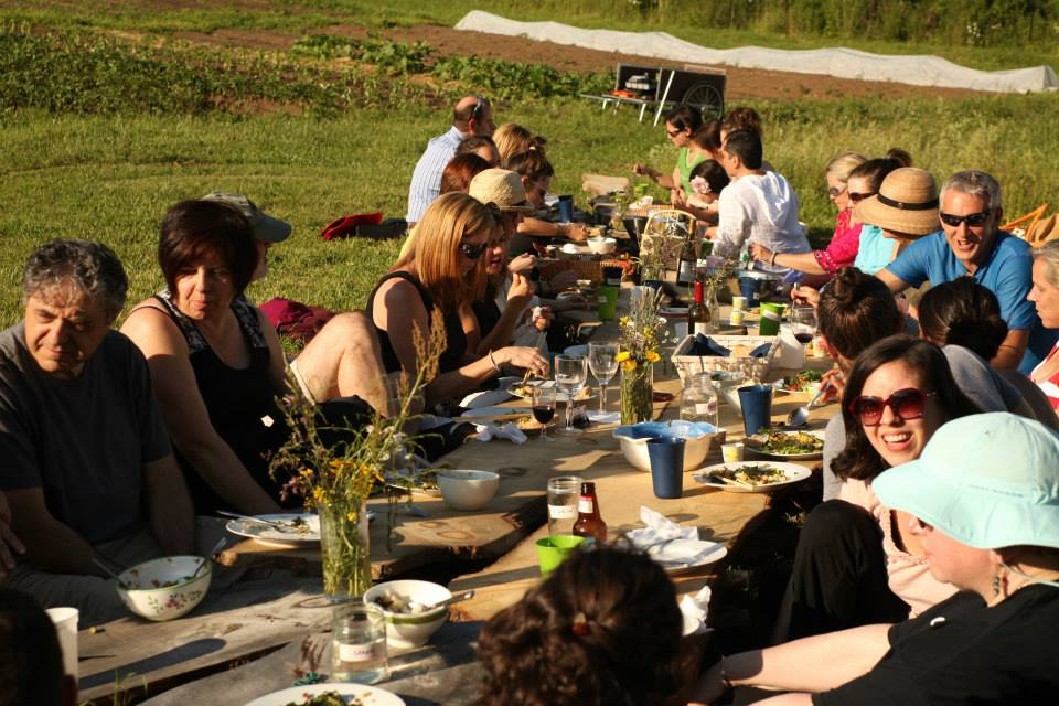Dinner in the field - delicious!