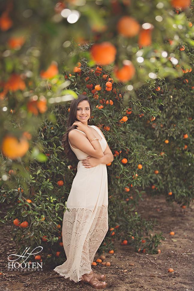 Orlando-Orange-Grove-Portrait--3036741273-O.jpg