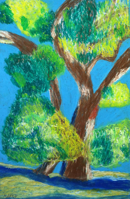 Aubrey_Tree.jpg