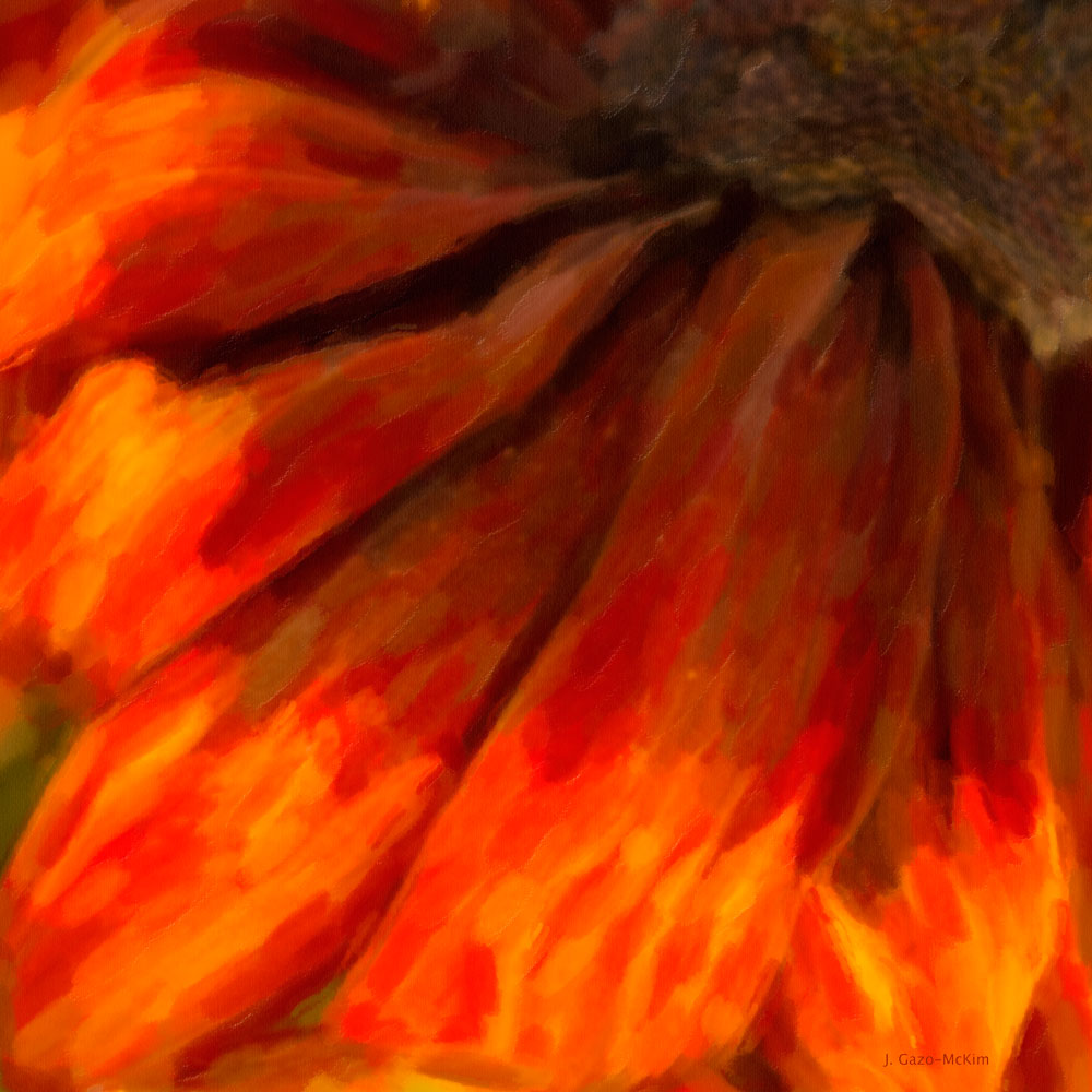 Petals by J. Gazo-McKim ©2014