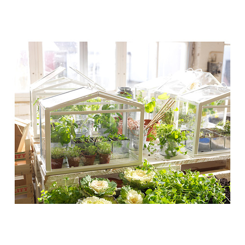 socker-greenhouse__0165672_PE308979_S4.JPG