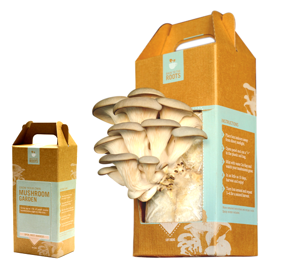 Closed_and_Fruiting_Mushroom_Garden_Box_Back_to_the_Roots.png