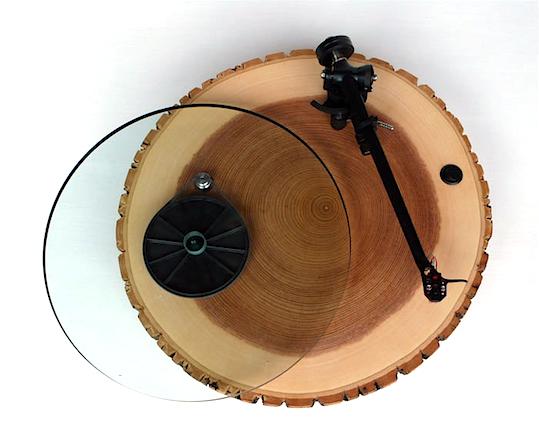 AudiowoodBarky.jpg