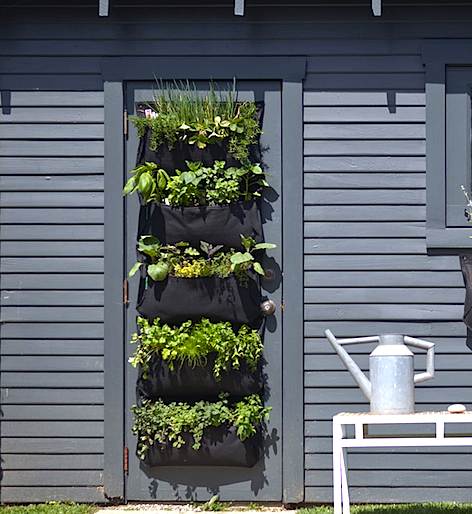 WallyIndoor:OutdoorHangingGarden.jpg