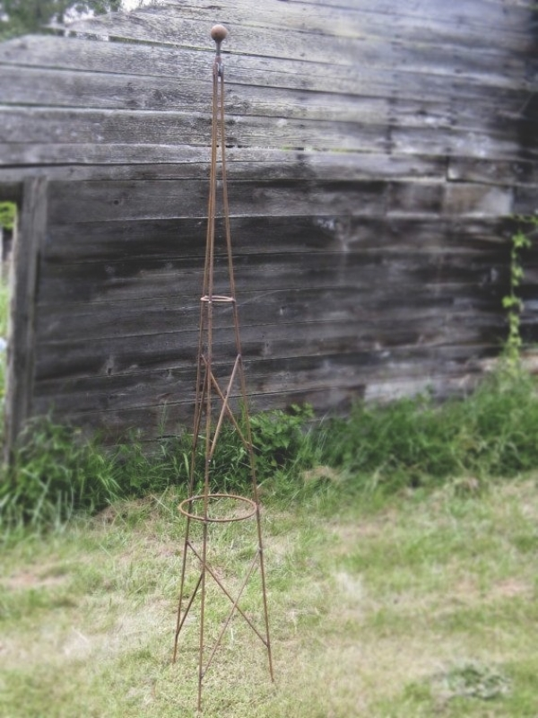 Be creative; Your hop-growing trellis can be almost anything vertical.