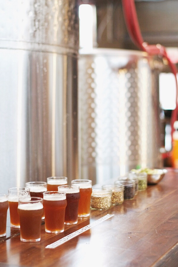 Ingredient Selection: Test Brewing