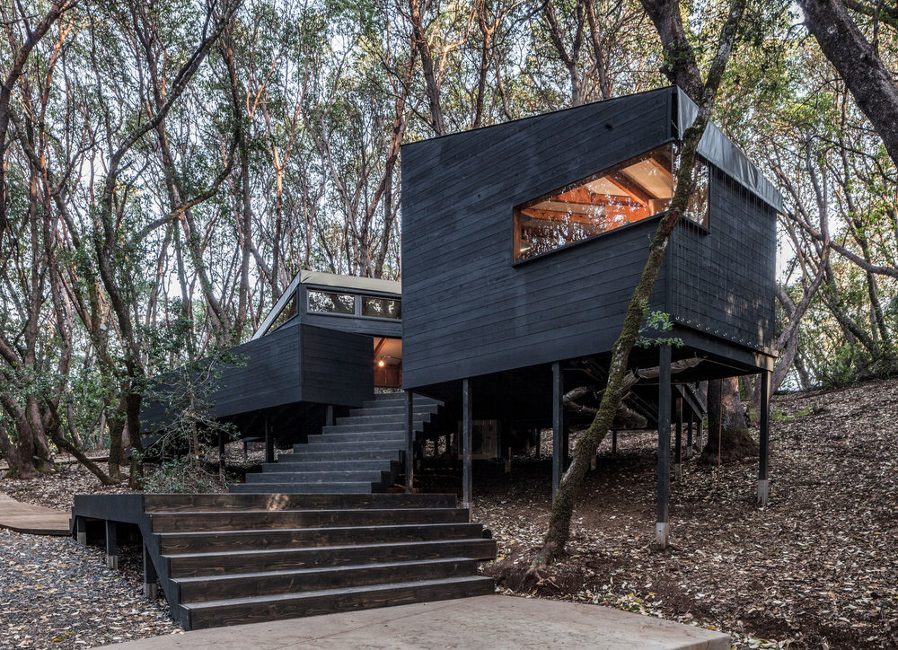 forest-house-by-envelope-a-d-3.jpg