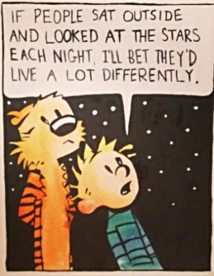 calvin and hobbs.jpg