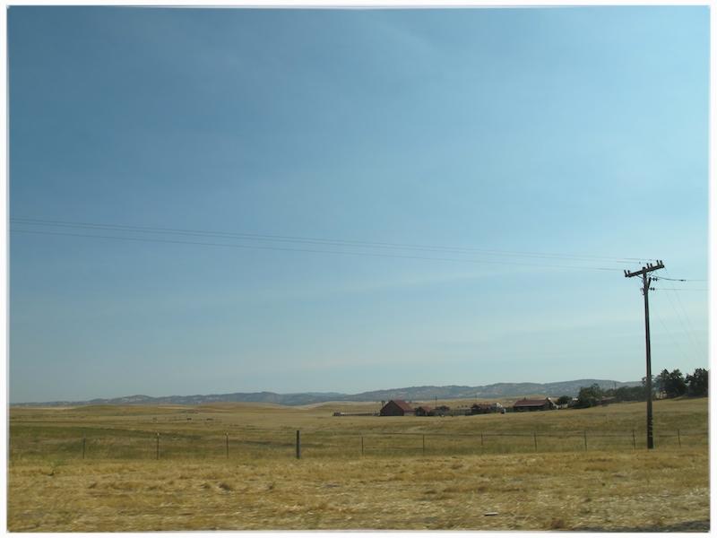 california drive.jpg