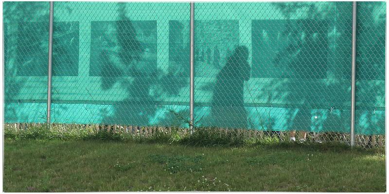 photoville fence.jpg