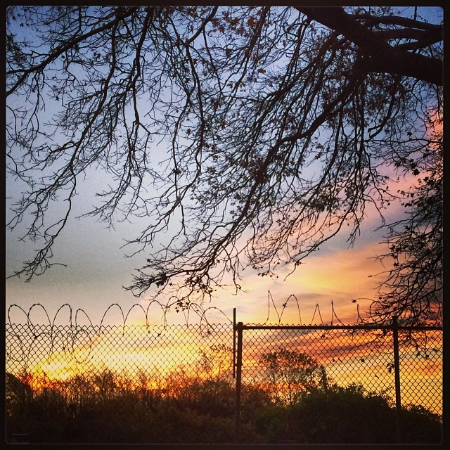 Sunrise and barbed wire.jpg