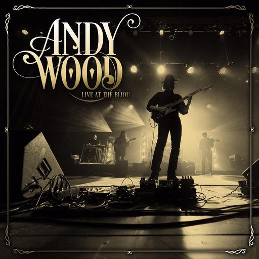 andy_wood_live_bijou.jpg