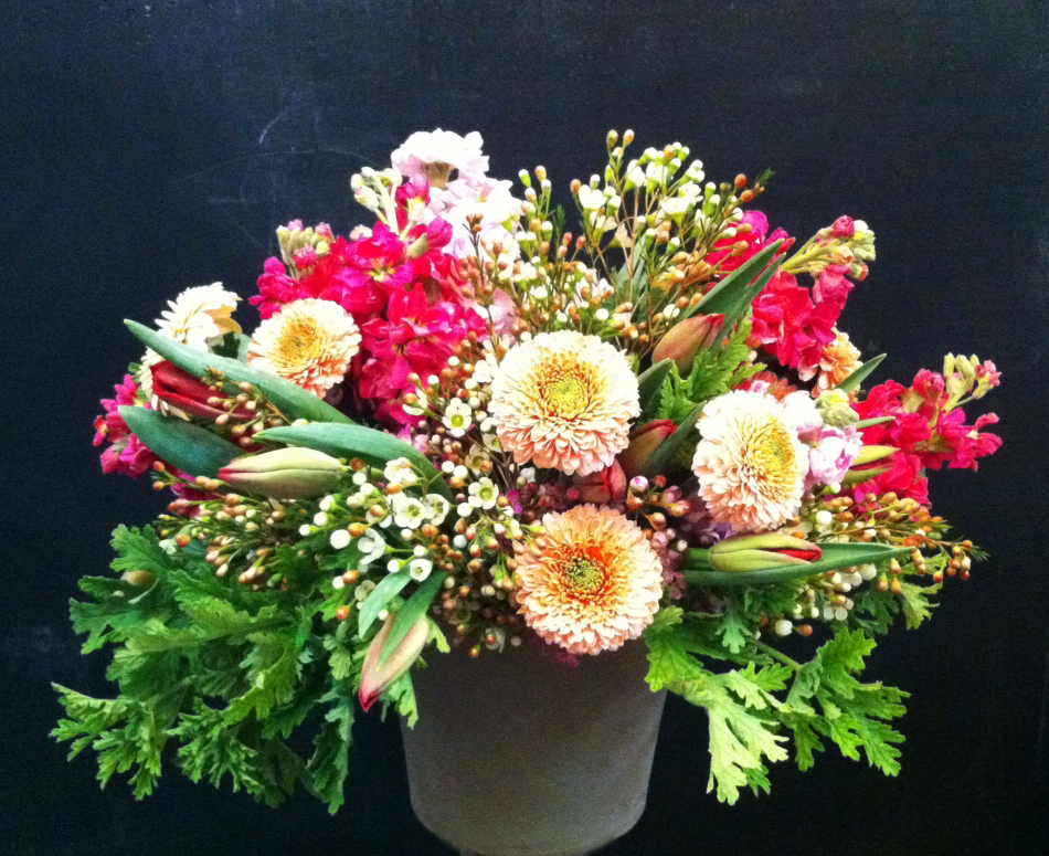 A winter arrangement created with tulips, lemon geranium leaves, wax flower, stock and gerbera daisies.