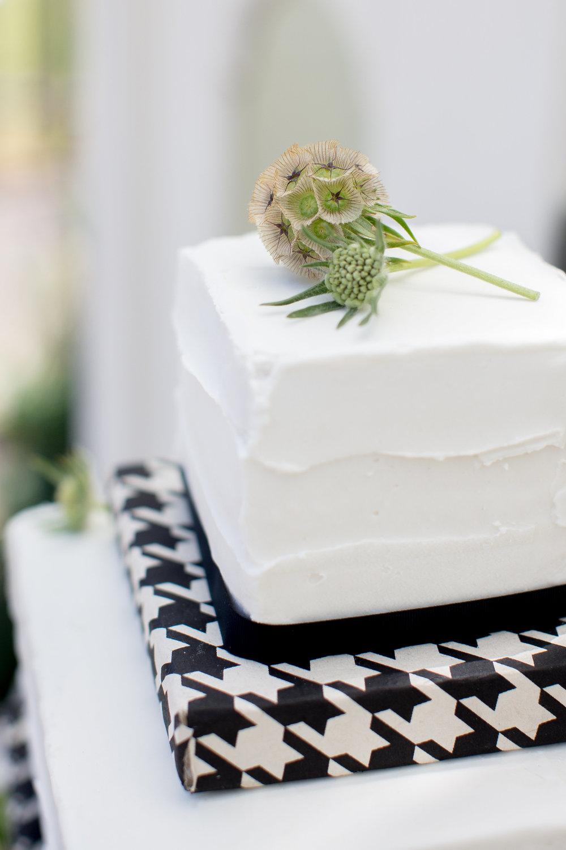 JennaBethPhotography-LGWConservatory-cake-flowers-modern-simple.jpg