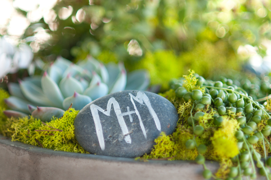 Ceremony-Wedding-Potted-Plants-Painted-Rocks.jpg