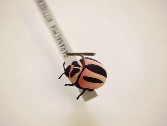 Entemology101_Lady-Bug.jpg