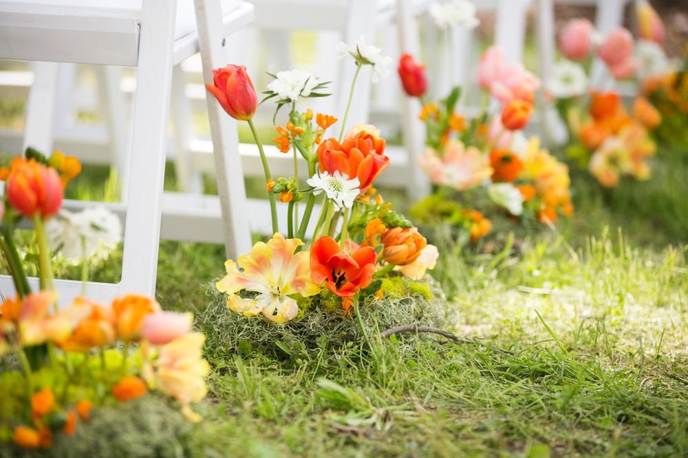 campovida-ceremony-tulip-wedding-aisle.jpg