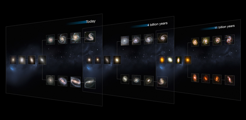 "In this illustration of the evolution of galaxies, the Hubble team shows how even the earliest visible galaxies captured by the Candels survey share similar structures to more recent nearby galaxies. You can see the barred spiral galaxies in the bottom row of each ""tuning fork"" diagram. (Click the image to see it larger or follow the link for more details)   Credit:  Nasa, Esa, and M. Kornmesser (ESO)"