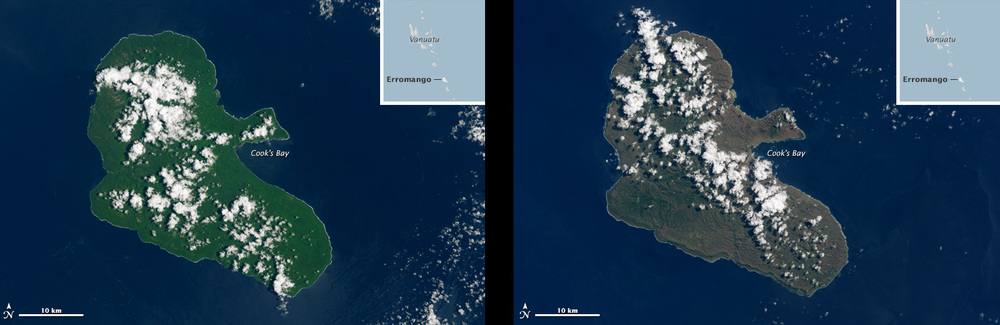 These are before-and-after shots of Vanuatu's Erromango island taken from the Landsat 8 remote sensing satellite. The island, once a vibrant green (left), became a dull brownish-green (right) after the cyclone Pam flattened the island's trees. Source: Nasa Earth Observatory Image Credit: USGS