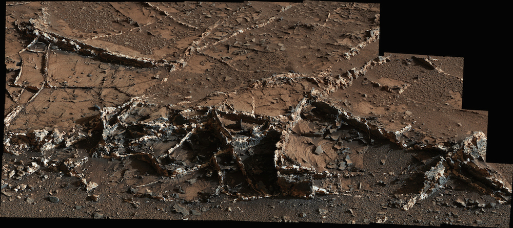 These surface ridges are mineral veins exposed as wind eroded the surrounding rock. They provide more evidence of Mars' watery past.  Credit:  Nasa/JPL-Caltech/MSSS