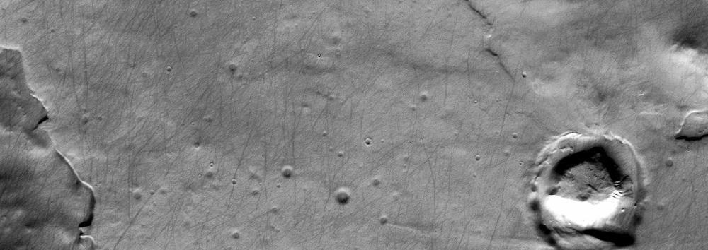 The Mars Odyssey Orbiter'sThemis camera caught thetracks ofdust devils criss-crossing the plains at the Martian south pole.Credit: Nasa/JPL-Caltech/Arizona State University