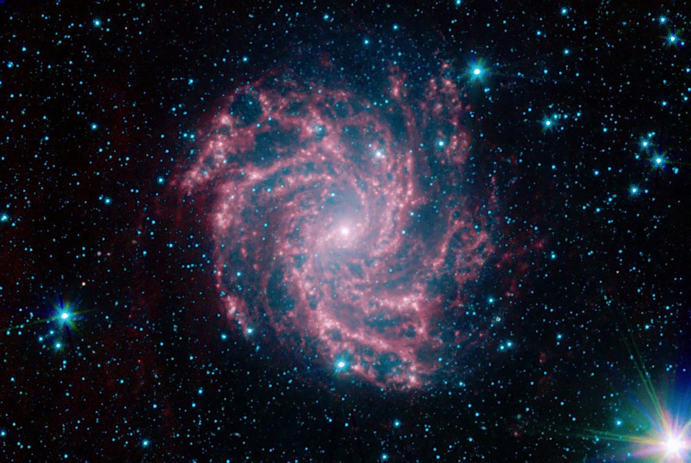 The Fireworks Galaxy has been the source of ten known supernovas over the past century. An amateur astronomer spotted the latest stellar explosion from his backyard observatory in Utah.    Credit:   Nasa / JPL-Caltech / R. Kennicutt (U. of Ariz./ Inst. of Astr., U. of Cambridge) and the SINGS Team