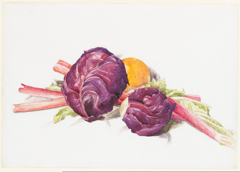 cavetocanvas :     Charles Demuth,  Red Cabbages, Rhubarb, and Orange , 1929   From the  Metropolitan Museum of Art :      Between 1924 and 1929, Demuth created a number of still life compositions with fruits and vegetables. These late watercolors, including floral studies such as the Museum's Red Poppies, present the still life elements more monumentally than ever before, enlarging their simple forms to fill large sheets of otherwise blank paper. In such fruit and vegetable studies, he seems newly concerned with volume and reflected light off these rounded surfaces. It is interesting to note that during these same years Georgia O'Keeffe introduced her own enormous flower paintings, and Demuth created his series of bold poster portraits that frequently used fruits, vegetables, and plants as attributes of the honoree.