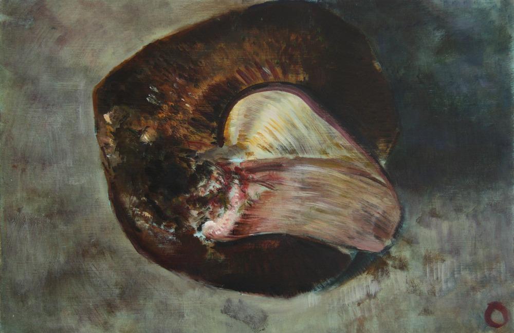 Mushroom 6