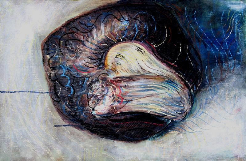 Alex Carletti Visionary Artist Sacred Mushrooms