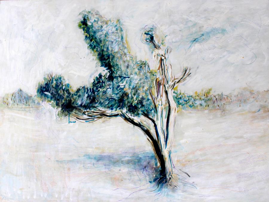 Alex Carletti Visionary Artist Plains