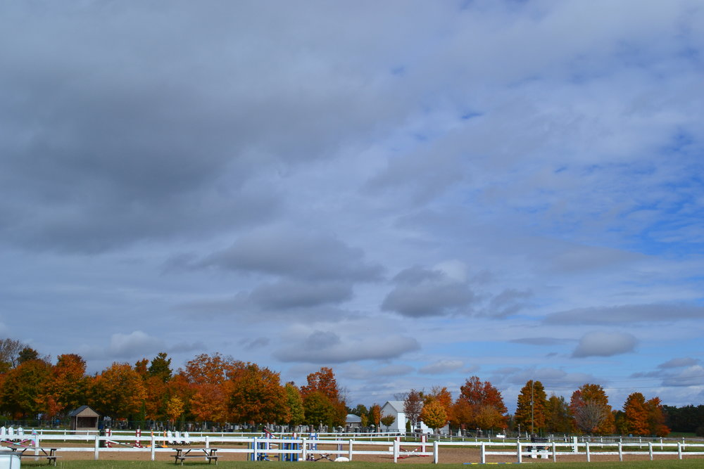 Edenview Equestrian Center Fall 2015