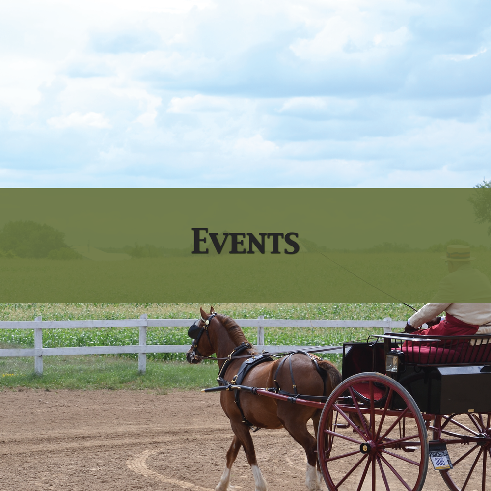 Edenview Equestrian Center Events 2017