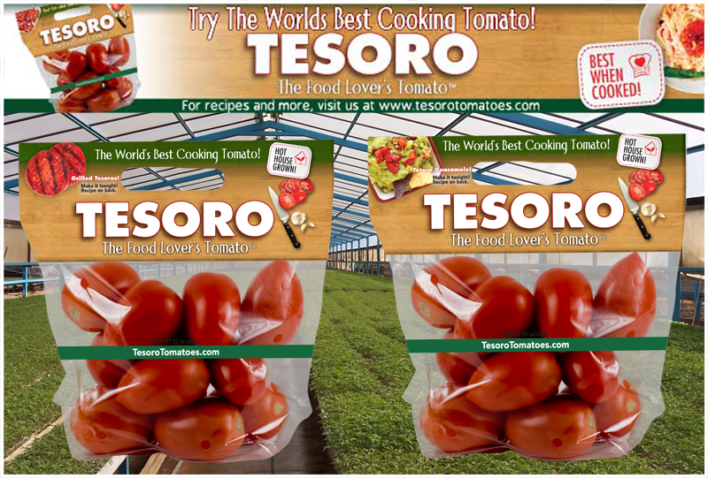 Tesoro-Grilled-Mocks-copy.png