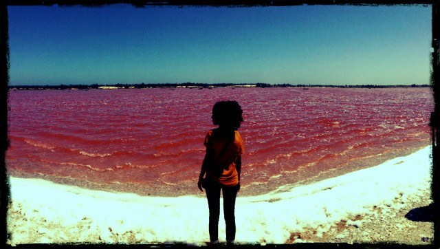 dakar senegal pink lake lac rose