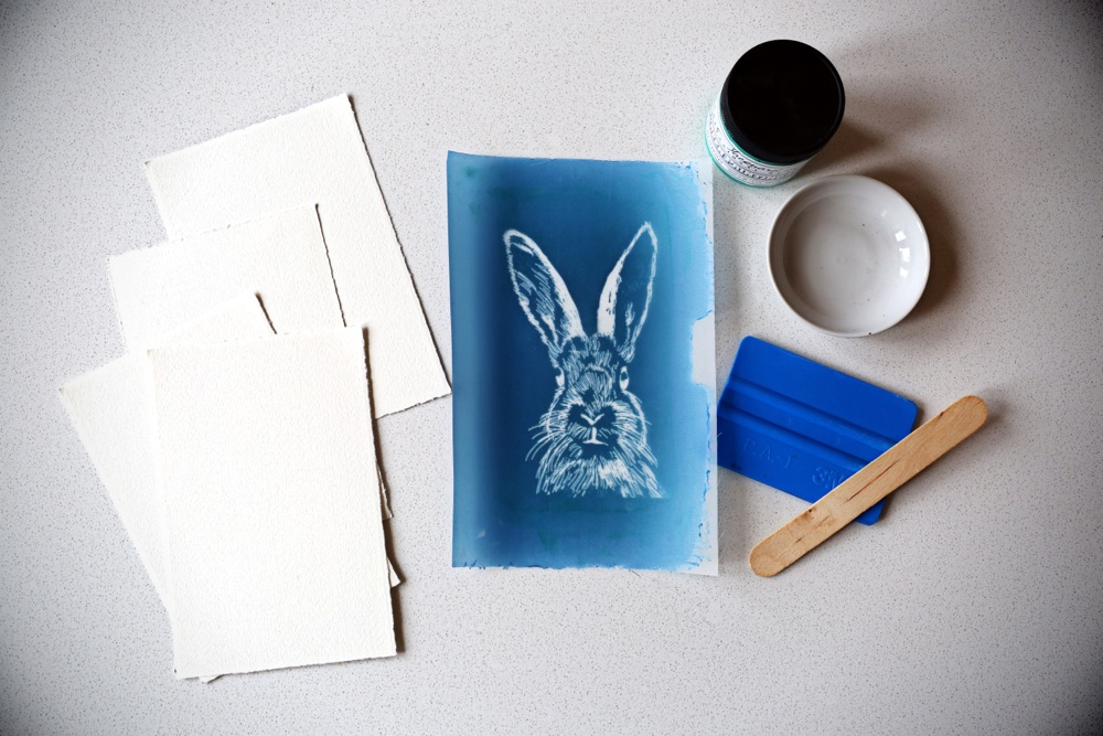 Bunnies3.jpg