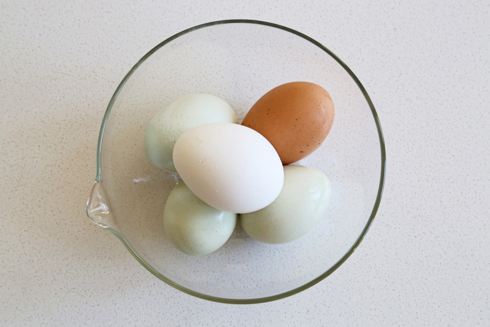 Lovely hues of eggs