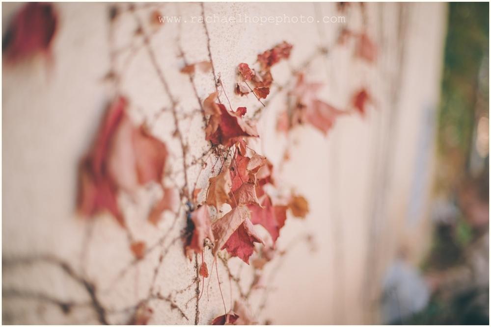 2012-10-18_011.jpg