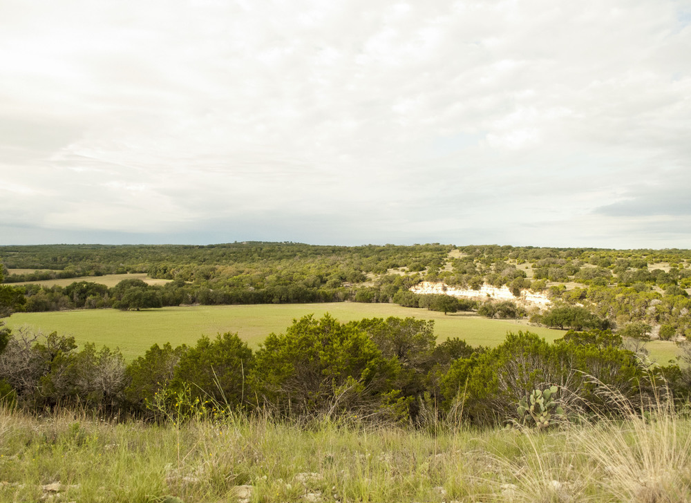 I want to begin by showing the view from my house. This really is the overview of the property. I like to think that this is the very tip top of the beginning of the Texas Hill Country. Being able to have a place to 'come home' too is a great feeling for me. The first part of my life was spent moving to different places so planting roots is really exciting to me....and planting them in such a beautiful place is just the cherry on top. (side note, for the critique I was called out on the washout on the cliffs, which I really expected to be called out on)