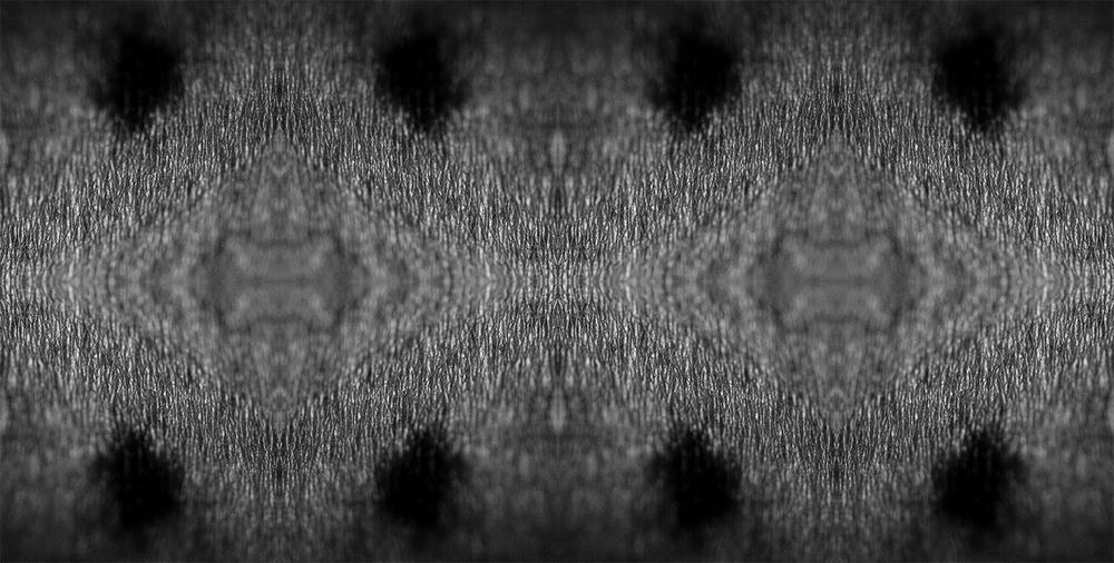 DSC_1715[1]_2_web.jpg