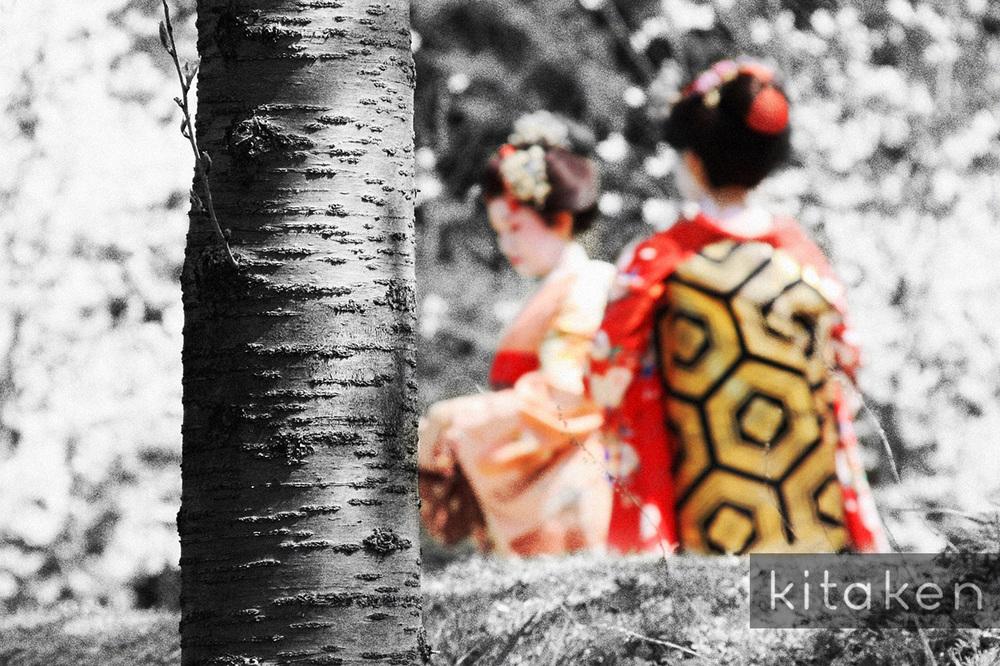 Galerie 1 traditionelles japan kitaken papierprodukte for Traditionelles japan