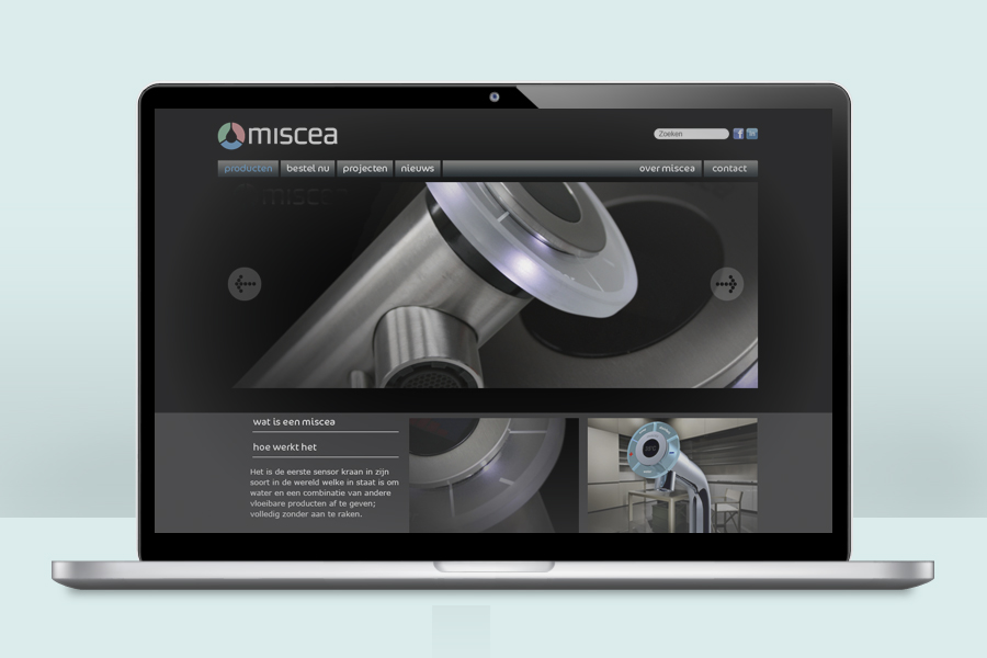 Website Miscea.jpg