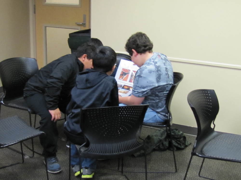 Students worked in groups as they viewed pictures, answered questions and shared with each other for better understanding.