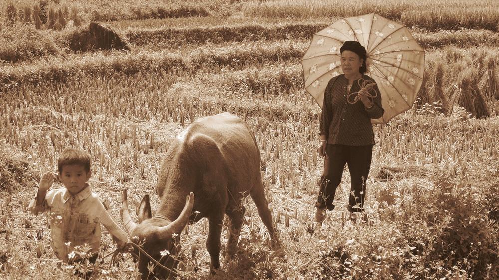 GGTR_Vietnam048.jpg