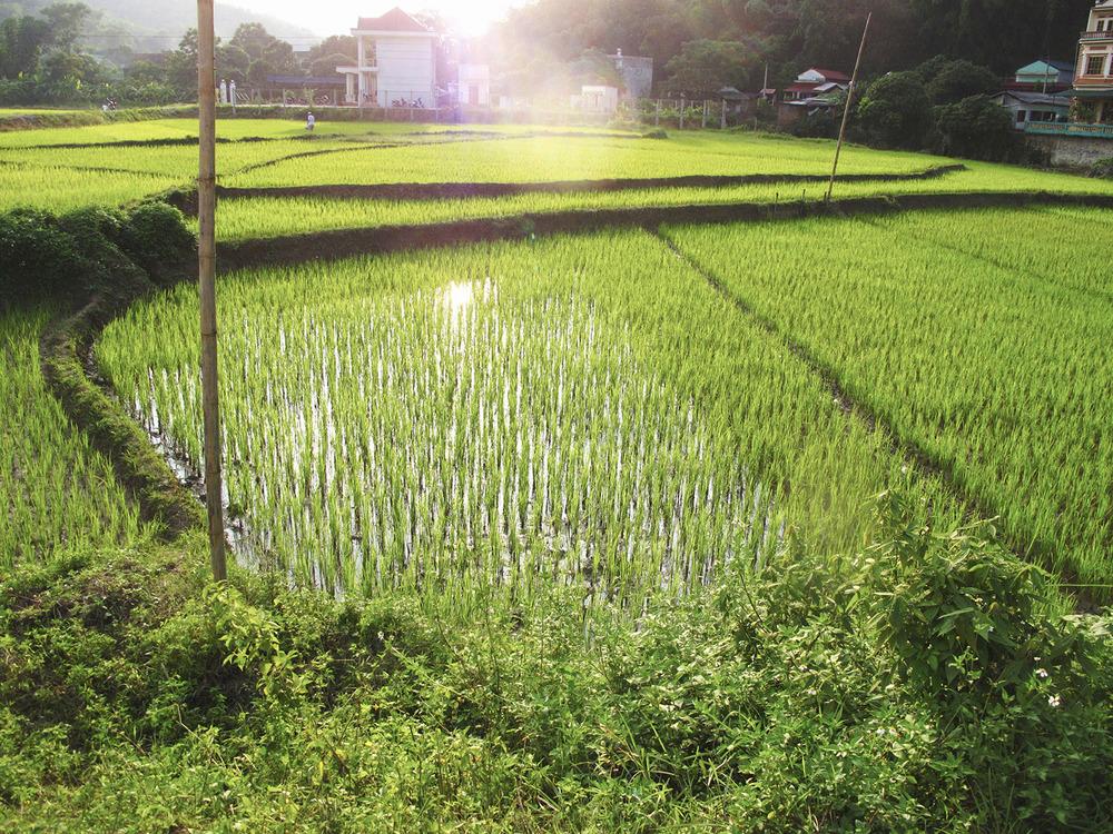 GGTR_Vietnam083.jpg