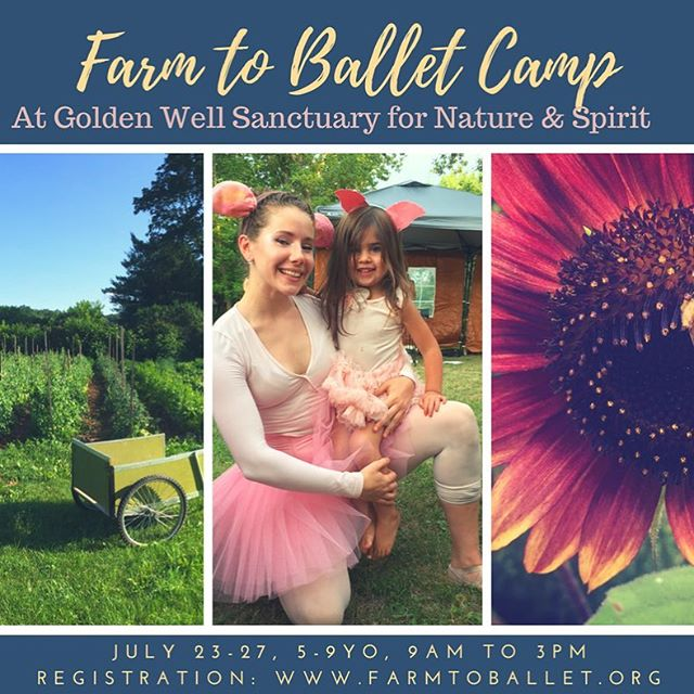 There's still time to sign up for Farm to Ballet Camp at Golden Well! More info via events page. Link in bio. Or go directly to farmtoballet.org #kidscamp #farmtoballet #signuptoday
