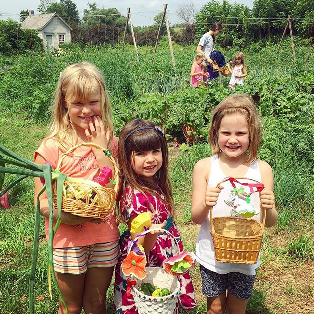 Harvest day at @farmtoballet camp! #farmkids #vermontlife #farmtoballet #farmtotable #organicveggies