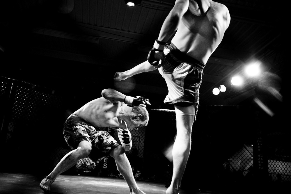 BL_012608_Fighting_0171b.jpg